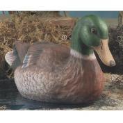 DM2080-Mallard Duck 15cm High