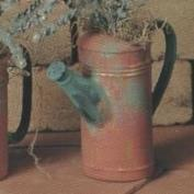 S3462-Tall Watering Can 13cm