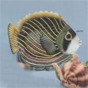 DM1797-Topical Fish Platter 43cmL